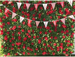 Red Rose Ivy Wall -