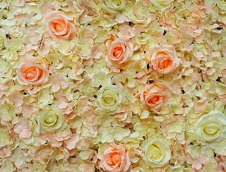 French Rose Flower Wall -