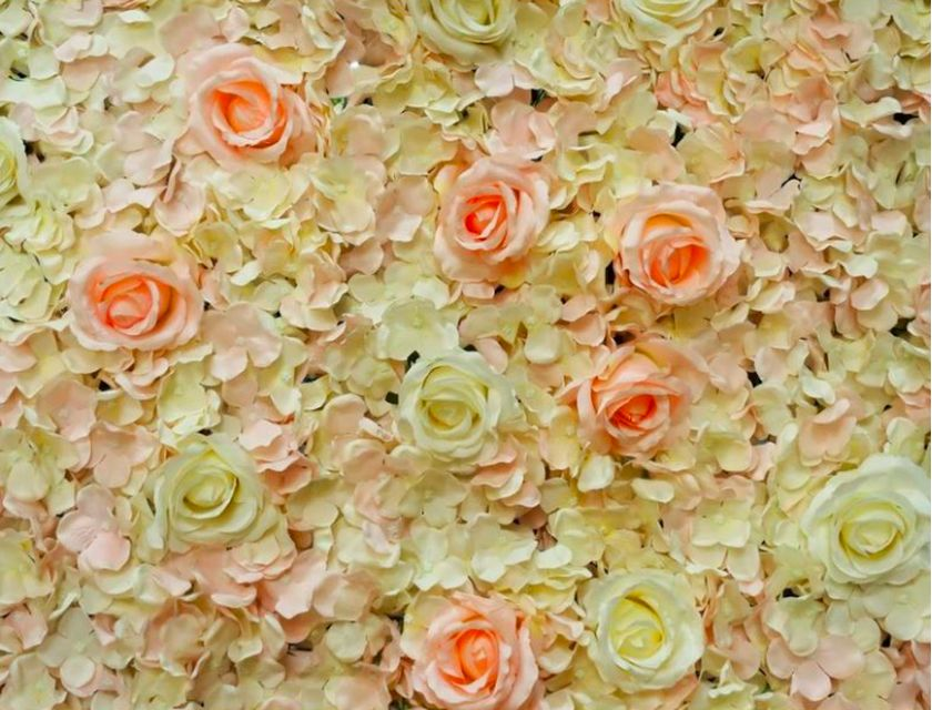 French Rose Flower Wall