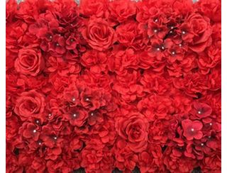 Red Rose Flower Wall