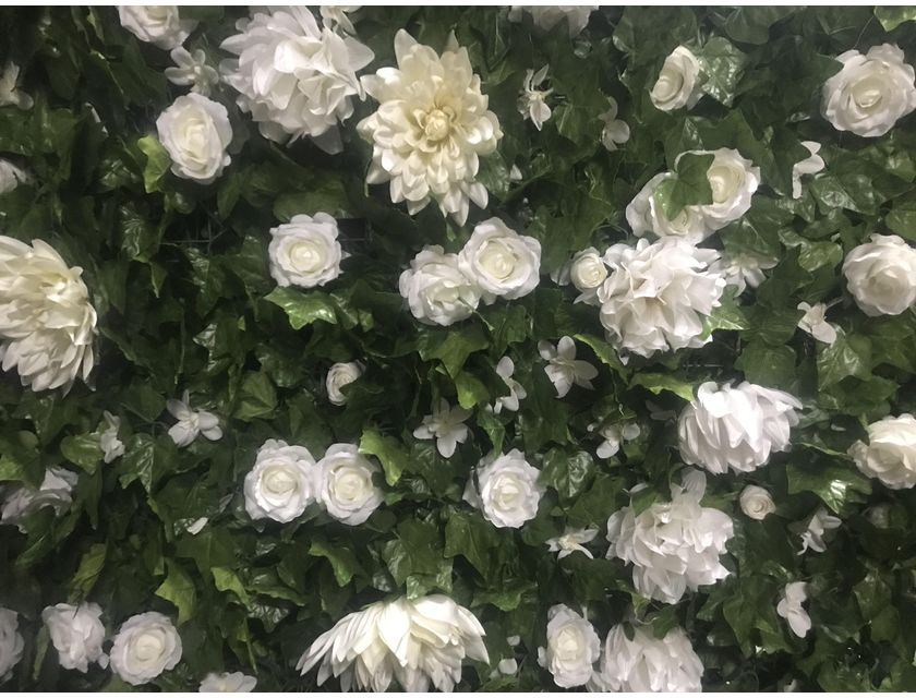 White Ivy Flower Wall -