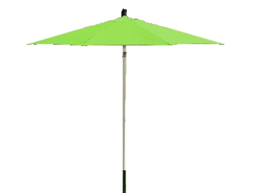 Umbrella - Lime - Includes base